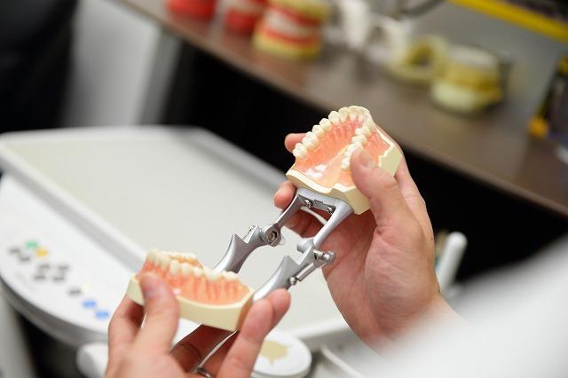 むし歯や歯周病などの治療も当院で行えます